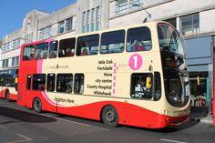 Brighton and Hove Bus