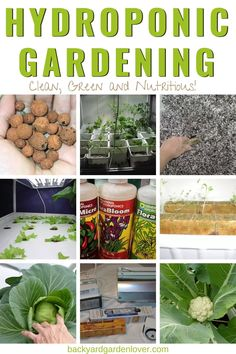If you are looking for information about hydroponic gardening for beginners, you'll love this tour of my hydroponic garden with step by step instructions on building your own hydroponic system. Perfect for growing herbs, fruits, and vegetables year-round, Indoor Hydroponic Gardening, Hydroponic Vegetables, Indoor Vegetable Gardening, Container Gardening Vegetables, Organic Gardening, Urban Gardening, Urban Farming, Hydroponic Growing, Hydroponics System