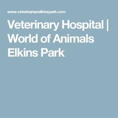 Veterinary Hospital | World of Animals Elkins Park