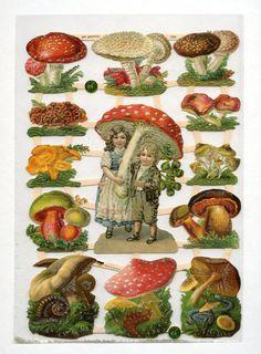 Mushroom SCRAP RELIEFS, Mushroom Die Cuts, Scrap Reliefs, Paper Mushrooms, Die Cut Mushroom, Fly Mushroom, Flora Die Cuts, Flora Clip Art by OneDayLongAgo on Etsy