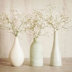 Gypsophilia In Vases Canvas from ARTHOUSE