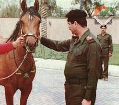 Saddam Hussein, Bts Girl, Baghdad, African Art, Superhero, History, Photograph, Animals, Photography