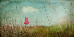 Wallflower by jamie heiden, via Flickr Her ideas are fabulous. And so are the results.