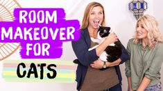 Room Makeover for Cats | Interior Design Challenge | Mr. Kate Decorates