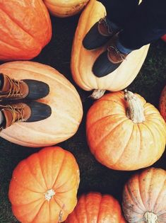 Duck boots+ pumpkins= Fall
