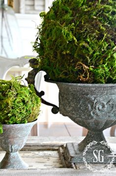 Decorative Moss Balls Inspiration How To Make Moss Covered Balls  Pinterest  Craft Crafty And Gardens Inspiration Design