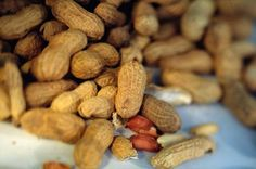 Information on How to Grow Peanuts From Seed