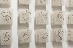 Tracing the Isolated Form - Hannah Toohey