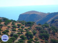 - Zorbas Island apartments in Kokkini Hani, Crete Greece 2020 Crete Greece, Hani, Island, Europe, Environment, Islands