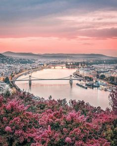 Spring in Budapest, Hungary Hungary Travel Destinations Honeymoon Backpack Backp… – Best Europe Destinations Places To Travel, Places To Visit, Nature Photography, Travel Photography, Hungary Travel, Budapest Travel, Destination Voyage, World Cities, France
