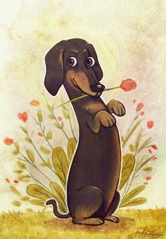 Dressing Doggy Up For Halloween Dachshund Funny, Arte Dachshund, Dachshund Puppies, Weenie Dogs, Dachshund Love, Daschund, Dachshund Drawing, Dog Paintings, Paintings Online