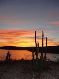 La Paz Sunset. Baja California Sur, Mexico.  Pic: https://www.facebook.com/purelapaz