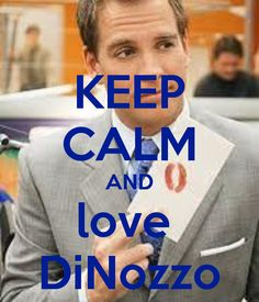 This is NOT AN APPROPRIATE PICTURE FOR THIS....  <--- i have to agree, if you have seen the show, you know why this is not a good picture to show DiNozzo love