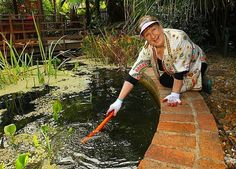 Have you kids grown up? Sick of maintaining a pool that no one uses? Discover how to convert it into a pond for wildlife. Its reversible and easy.