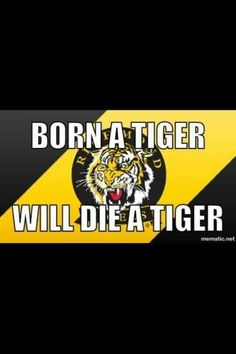 So true Richmond Afl, Richmond Football Club, Yellow Black, Football Team, Chevrolet Logo, Tigers, Tatt, Melbourne, Scene