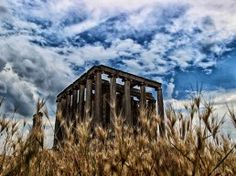 Temple Of Zeus  Zeus Tapınağı