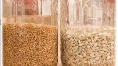 Por que deixar grãos e sementes de molho antes de consumi-los?