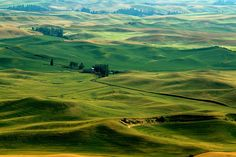 Summertime in the Palouse by Cole Chase Photography, via Flickr