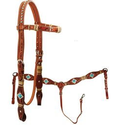 possibility for newest barrel horse