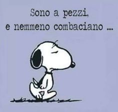 3031 Best Snoopy forever images in 2020 Funny Links, Snoopy Love, Book Markers, Good Morning Good Night, Emoticon, Words Quotes, Funny Images, Vignettes, Cool Words