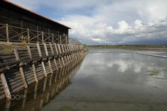 Salt water - Salinas da Figueira da Foz