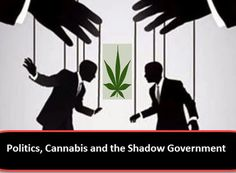 Politics, Cannabis and the Shadow Government