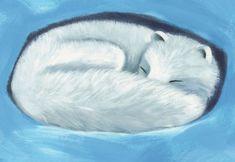 "From the book ""Meet the Polar Fox"" (or ""Møt fjellreven"" in Norwegian) The Book, Fox, Meet, Illustrations, Books, Libros, Illustration, Book, Book Illustrations"