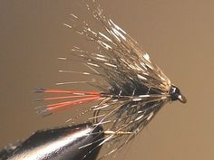 Palmerd Wet Fly