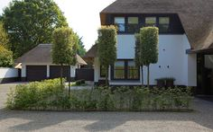 Wintergroene cilindervormige steeneiken en lage beukenhaagjes in halfverharding zorgen voor het nodige tuinvolume in contrast met de hoge villa.