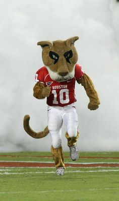 Houston Cougars - mascot Shasta
