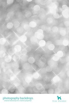 Silver Bokeh Photography Backdrop // Photo Booth Backdrop // Party Background (TL0002) 8x10 $239.00