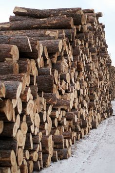 Stacked Wood ~ Photo by...by Amber Lianne