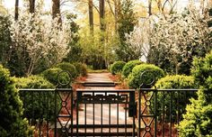 Page|Duke Landscape Architects