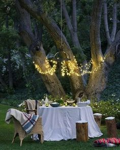 Outdoor dinner party for-the-home