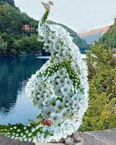 Garden Trellis, Garden Gates, Garden Art, Atlanta Botanical Garden, Unique Flower Arrangements, Blossom Garden, Topiary Garden, Water Features In The Garden, Beautiful Flowers Garden