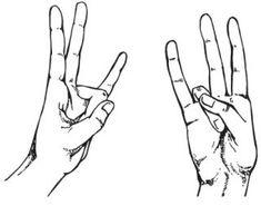 Как стать мудрым? Поможет мудра «Око мудрости»! Соединяя пальцы определенным образом, можно активизировать меридианы и направить энергию по телу, восстановить поток энергии, устранить «поломки» в больных органах, «омолодить» и сохранить энергетические запасы в теле, избавиться от шлаков, успокоиться и т.д. | http://omkling.com/stat-mudrym/