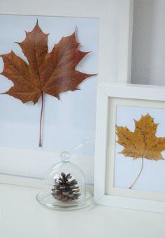 Ideas para decorar con hojas