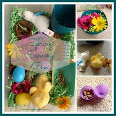 Spring Sensory Box and Activities - plus some modifications for special needs