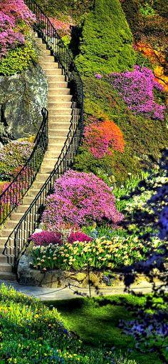 Travelling - Butchart Gardens, Isla de Vancouver, Columbia Británica