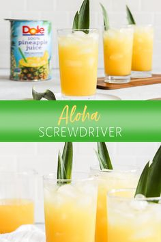 Pineapple Screwdriver cocktails are super simple to make! Easy to mix up by the glass or the pitcher with pineapple juice, orange juice and vodka. Great for get togethers with friends, game day gatherings or your next cocktail party. Vodka Mixed Drinks, Fruity Alcohol Drinks, Easy Alcoholic Drinks, Alcohol Drink Recipes, Vodka Recipes, Punch Recipes, Cocktails To Make With Vodka, Good Mixed Drinks, Alcoholic Drinks With Ginger Ale