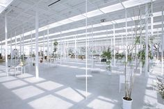 'KAIT' the kanagawa institute of technology campus, Tokyo - by junya ishigami + associates on