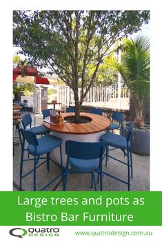 Ideas on how to use pots, planters and plants as bar and public seating. Outdoor Dining, Dining Area, Outdoor Decor, Bar Furniture, Outdoor Furniture Sets, Public Seating, Greenery, Pots, Planters