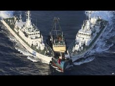 Japanese coast guard vessels block a protest boat Wednesday after activists from Hong Kong landed on disputed Uotsuri Island in the East China Sea. Regional tensions flared as the activists landed on the island claimed by Japan, China and Taiwan. Cost Guard, Chinese Boat, Coast Guard Ships, Vietnam, Hongkong, Navy Ships, China, Sailing, Funny Pictures