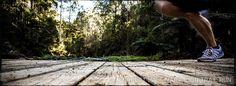 forrest trail run - southernexposure.com.au