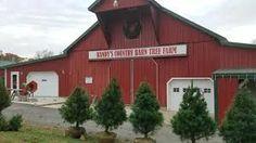 Randy's Country Barn Christmas Tree Farm - YouTube #barnpros #barns #barn #prefabbarns #barnhomes #barnkits #barnswithapartments #barnbuilding #barnhouses #barnkit Prefab Barns, Barn Kits, Christmas Tree Farm, Farms, Shed, Outdoor Structures, Cabin, Country, House Styles