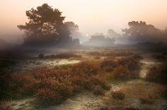 10 tips voor herfstfotografie , Inspiratie | Zoom.nl