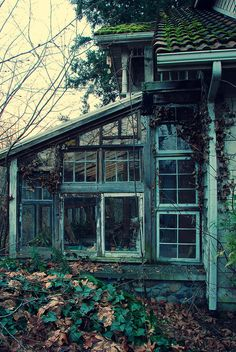 I would restore this and make it the kitchen. All that wonderful natural light....♥