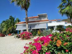 Marazul Resort Apartment - TripAdvisor