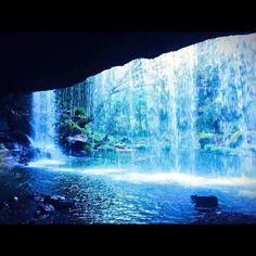 最近黒川温泉いったばっかやけどまた夏くらいに熊本いきてーなぁ これからいっとき熊本の写真あげます  #熊本 #鍋ヶ滝 #滝の裏側 #観光 #がんばろう熊本 #nature #waterfall #special_spot_ #igersjp #ig_japan #iphone #写真好きな人と繋がりたい by zackuro114
