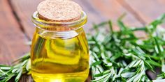 Carnosal is a phenolic diterpene found in rosemary, sage, parsley, and oregano. Research ANTI-CANCER Carnosic acid and carnosol constituents in Rosmarinus officinalis targeted multiple signaling pathways involved in cell cycle modulation and a. Matcha, Human Nutrition, Infused Oils, Recipe Instructions, Homemade Beauty Products, Roasted Potatoes, Syrup, Cucumber, Natural